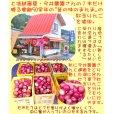 画像5: 紅玉りんごのアップルパイ6.5号