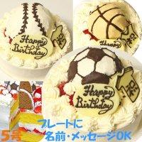 【店頭渡し】 ボールケーキ5号〜サッカー・野球・バスケット・フルーツ・いちご・マンゴーよりお選び下さい〜